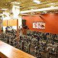 Строительство и открытие тренажерного зала как бизнес идея