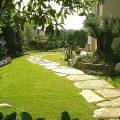 Дачный газон как элемент стиля загородного дома