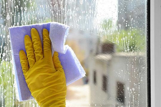Как избавиться от плесени на пластиковых окнах
