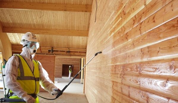Как бороться с плесенью и грибком в деревянном доме
