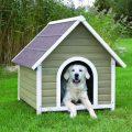 Будка для собаки своими руками— пошаговые инструкции!